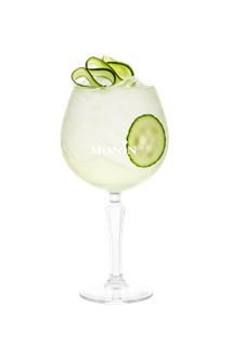 Cucumber and Mint Gin & Tonic